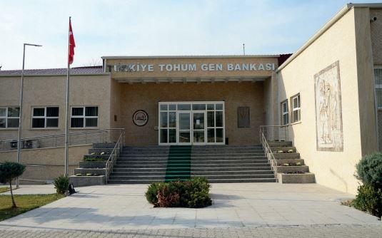 Ankara'da bulunanTürkiye Tohum Gen Bankası, dünyanın 3. büyük tohum gen bankasıdır.
