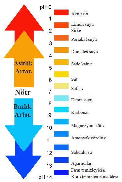 Asit ve bazların bazı özellikleri ve çeşitli maddelerin pH aralığı