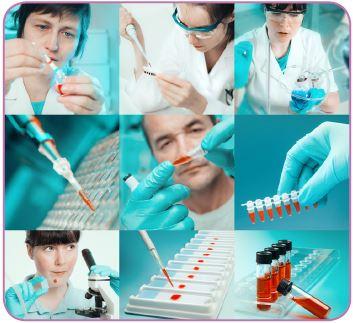Besi yeri ve hücre kültürü