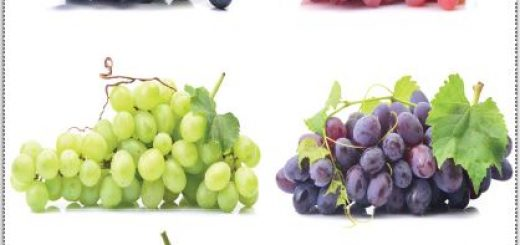 Farklı özelliklere sahip üzümler