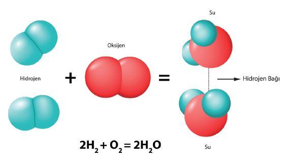 Su molekülkeri arasındaki hidrojen bağı
