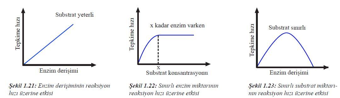 Substrat Reaksiyon