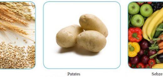 Tahıllar - Patates - Sebze ve Meyveler