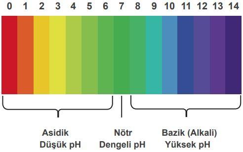 pH cetvelinde değerler 0 ile 7 arasında ise madde asidik, 7 ile 14 arasında ise madde bazik, 7 ise madde nötrdür.
