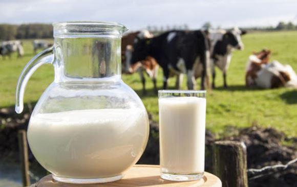 Kalsiyum; süt ve süt ürünlerinde bol miktarda bulunur.